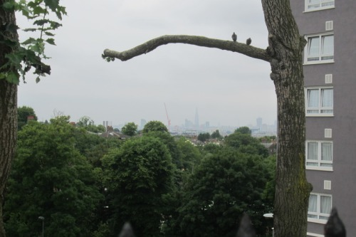 The Shard seen from Charlton